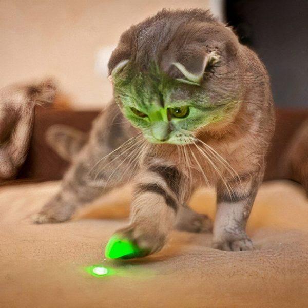Puntero Laser Verde Para Gatos Perros Mascotas
